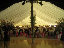 Marquee Lining Sales
